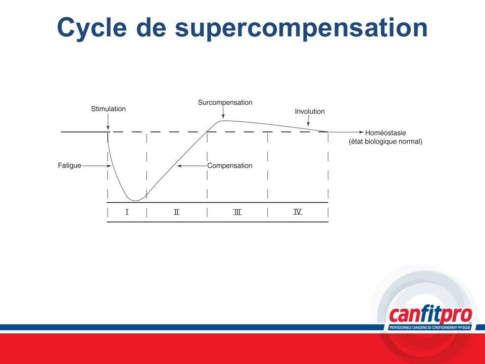 Cycle de supercompensation