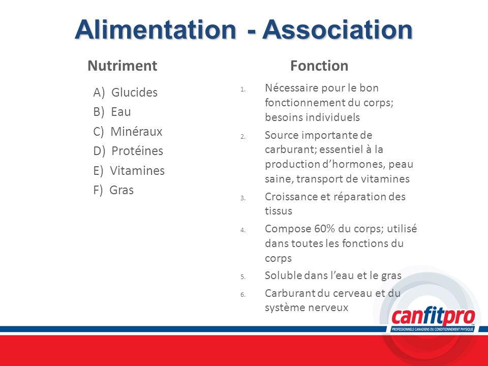 Alimentation - Association Nutriment A) Glucides B) Eau C) Minéraux D) Protéines E) Vitamines F) Gras Fonction 1. Nécessaire pour le bon fonctionnemen