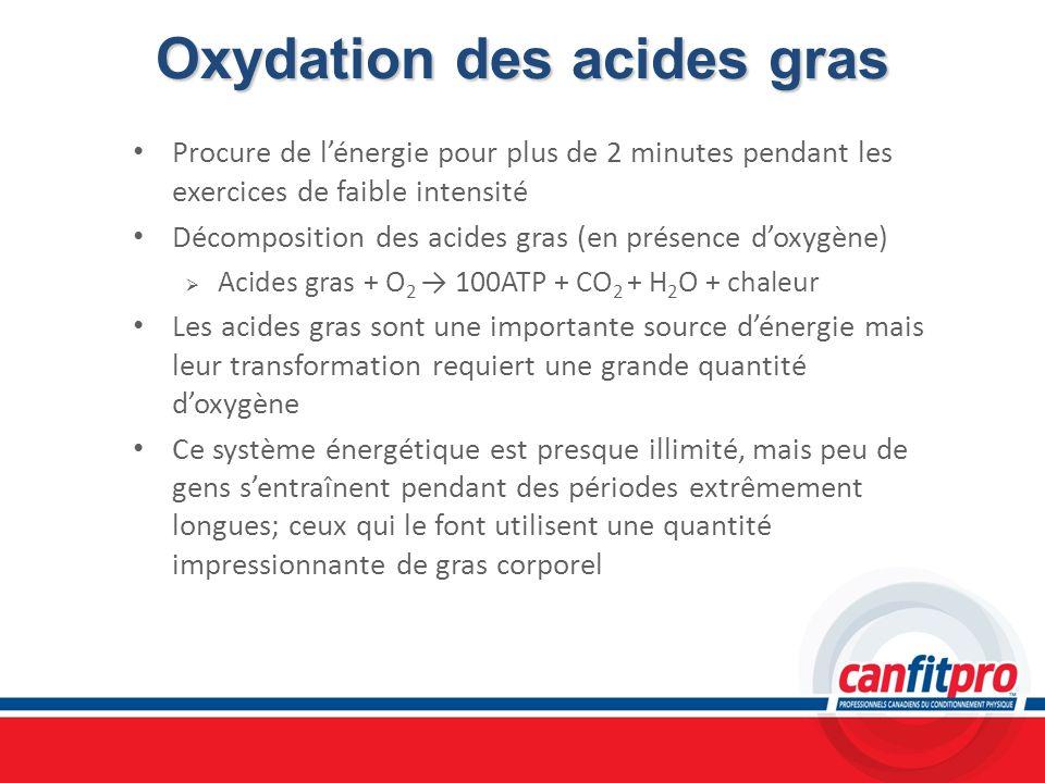 Oxydation des acides gras Procure de lénergie pour plus de 2 minutes pendant les exercices de faible intensité Décomposition des acides gras (en prése