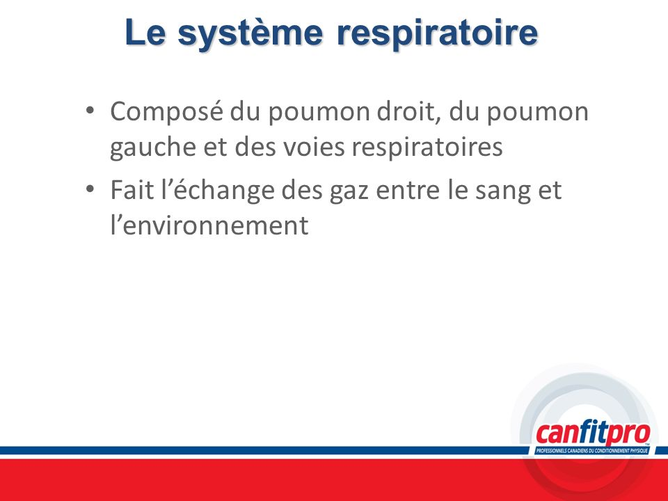 Le système respiratoire Composé du poumon droit, du poumon gauche et des voies respiratoires Fait léchange des gaz entre le sang et lenvironnement