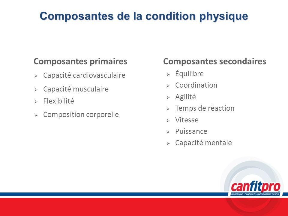 Composantesde la condition physique Composantes de la condition physique Composantes primaires Capacité cardiovasculaire Capacité musculaire Flexibili