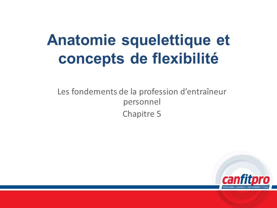 Anatomie squelettique et concepts de flexibilité Les fondements de la profession dentraîneur personnel Chapitre 5