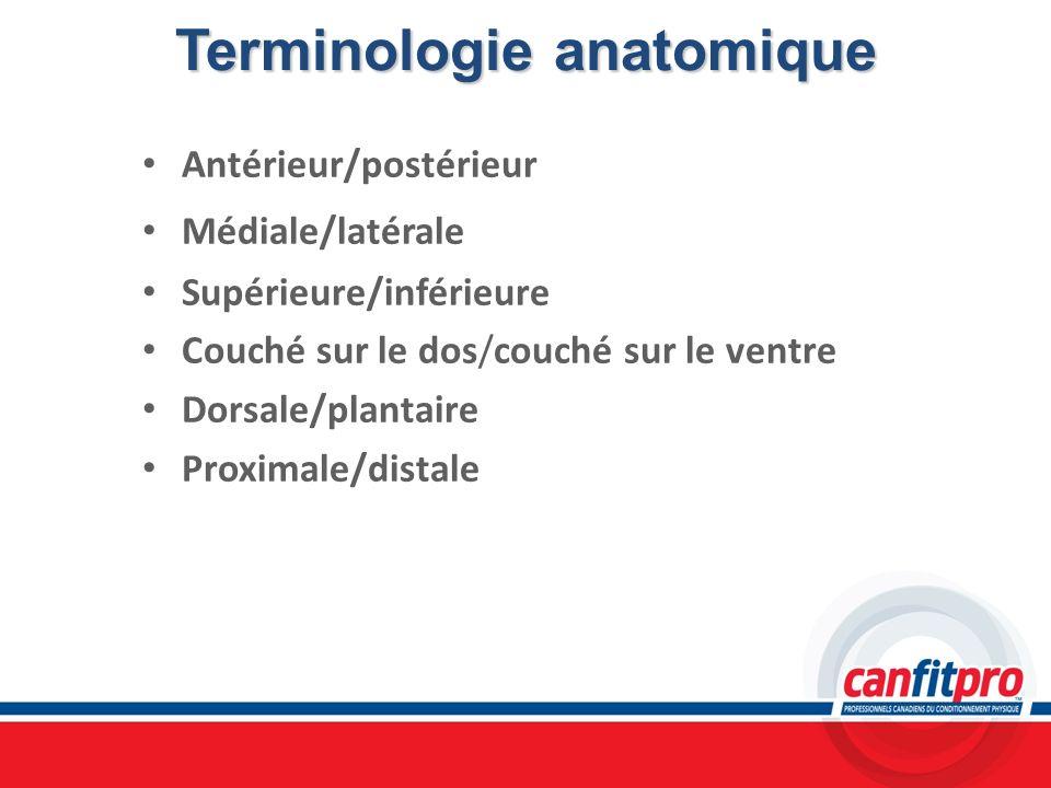 Terminologie anatomique Antérieur/postérieur Médiale/latérale Supérieure/inférieure Couché sur le dos/couché sur le ventre Dorsale/plantaire Proximale