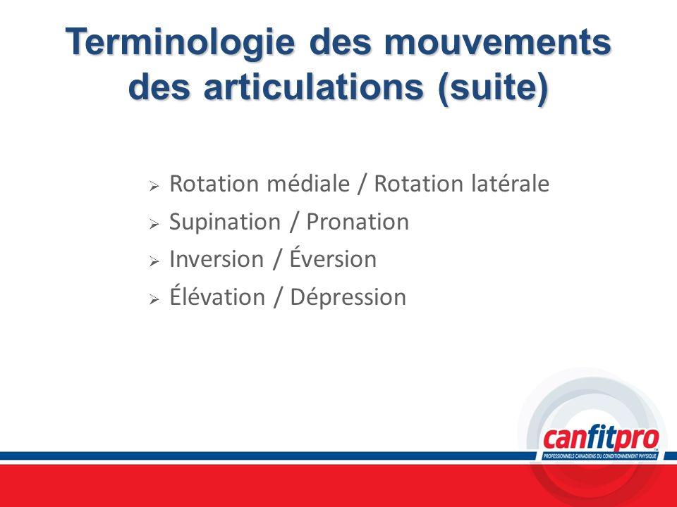 Terminologie des mouvements des articulations (suite) Rotation médiale / Rotation latérale Supination / Pronation Inversion / Éversion Élévation / Dép