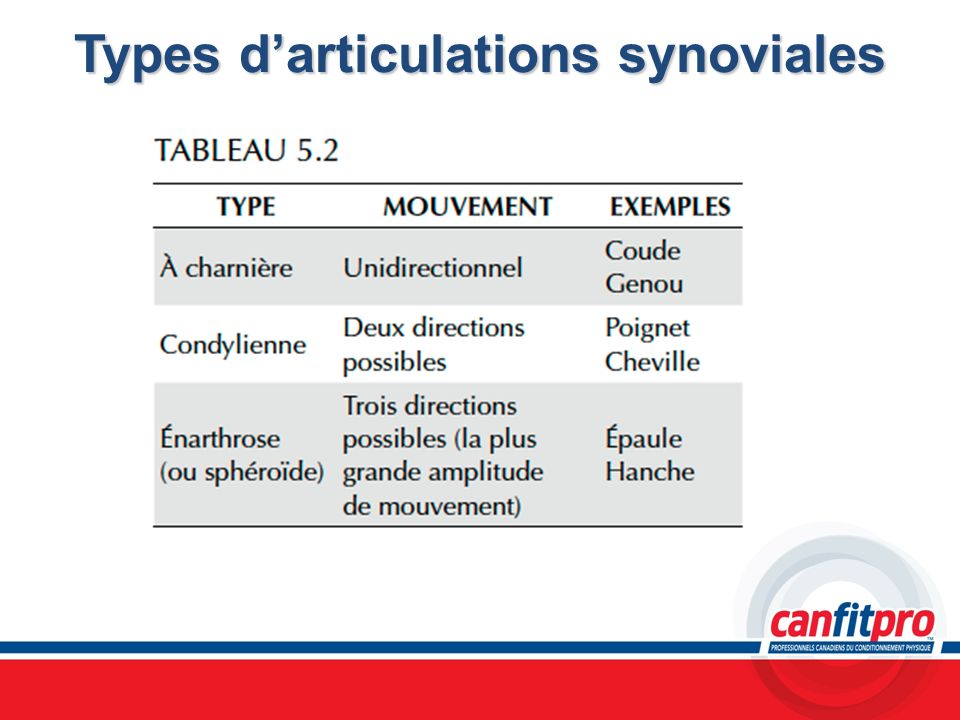 Types darticulations synoviales