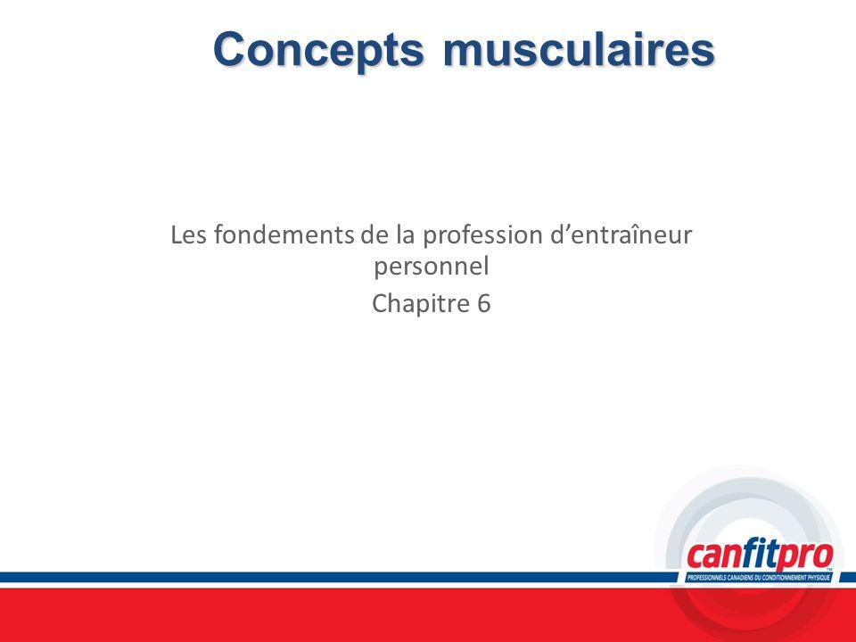 Concepts musculaires Les fondements de la profession dentraîneur personnel Chapitre 6