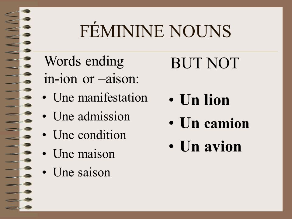 FÉMININE NOUNS Une manifestation Une admission Une condition Une maison Une saison Un lion Un camion Un avion BUT NOT Words ending in-ion or –aison: