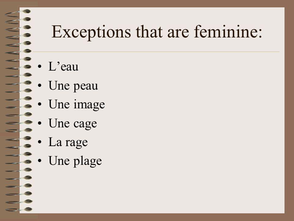 Exceptions that are feminine: Leau Une peau Une image Une cage La rage Une plage
