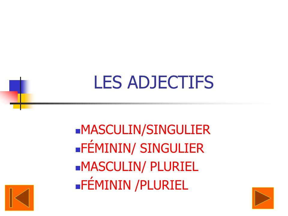 Adjectives An Adjective Describes a Noun or Pronoun.