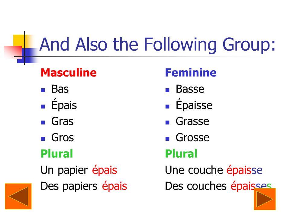 And Also the Following Group: Masculine Bas Épais Gras Gros Plural Un papier épais Des papiers épais Feminine Basse Épaisse Grasse Grosse Plural Une c