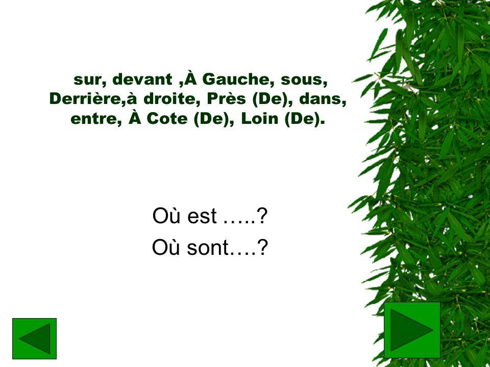 sur, devant,À Gauche, sous, Derrière,à droite, Près (De), dans, entre, À Cote (De), Loin (De). Où est …..? Où sont….?