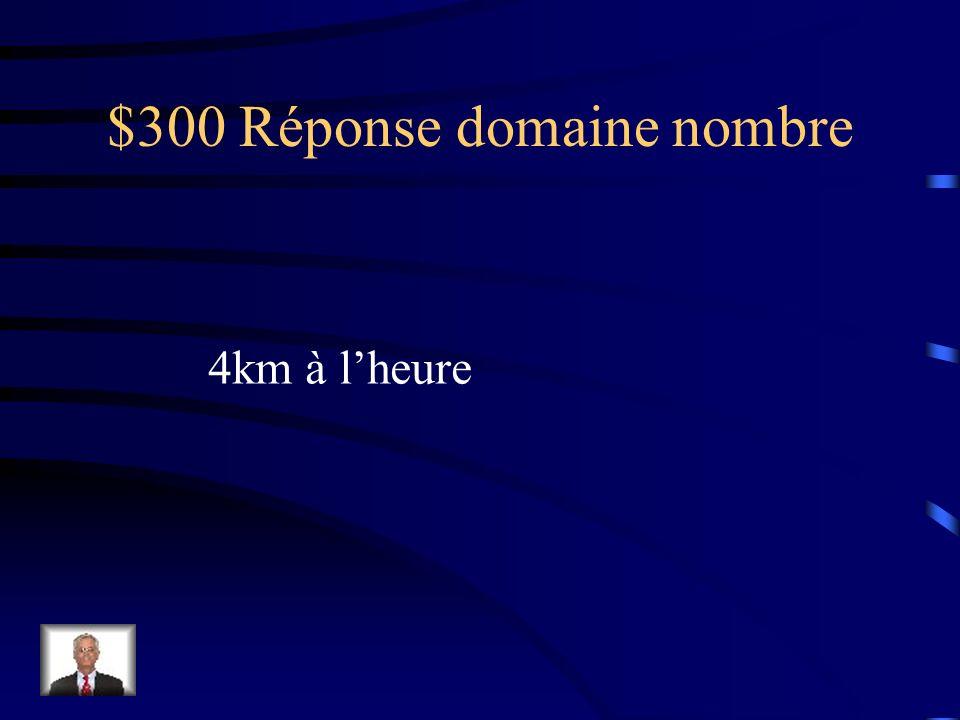 $300 Réponse domaine régularités et algèbre 4x