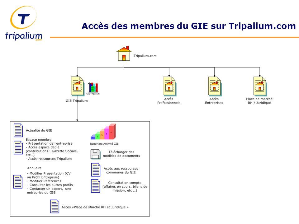 Accès des membres du GIE sur Tripalium.com