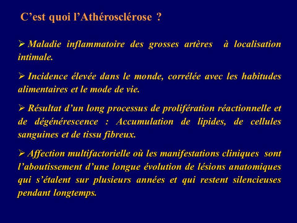 Cest quoi lAthérosclérose ? Maladie inflammatoire des grosses artères à localisation intimale. Incidence élevée dans le monde, corrélée avec les habit