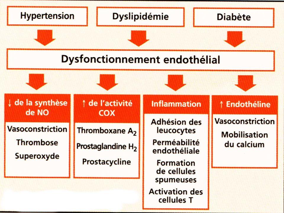 CONCLUSION Lathérosclérose est une maladie dont les données épidémiologiques et physiopathologiques indiquent que les lésions sont le résultat de phénomène complexe probablement multi-factoriel.