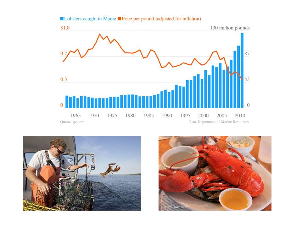 Where you wont find much evidence of a lobster glut, though, is in American restaurants.