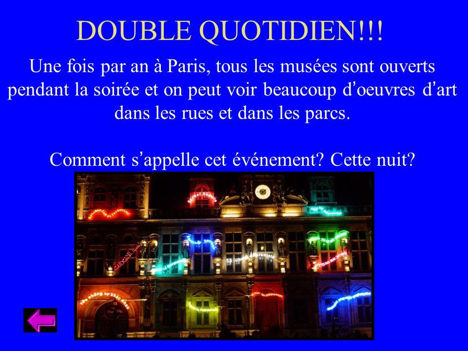 Une fois par an à Paris, tous les musées sont ouverts pendant la soirée et on peut voir beaucoup doeuvres dart dans les rues et dans les parcs.