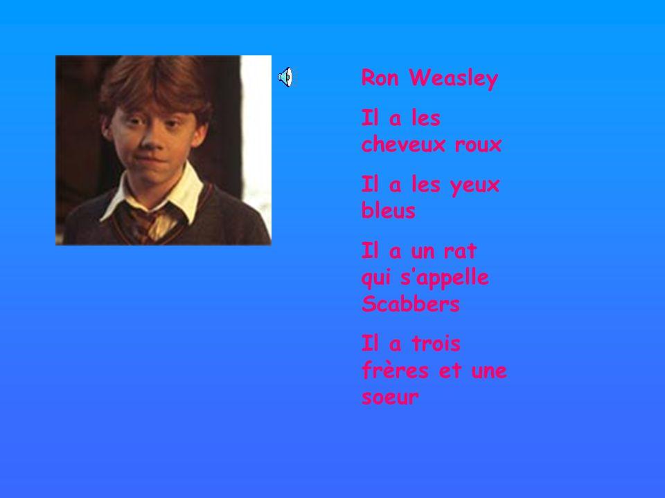 Ron Weasley Il a les cheveux roux Il a les yeux bleus Il a un rat qui sappelle Scabbers Il a trois frères et une soeur