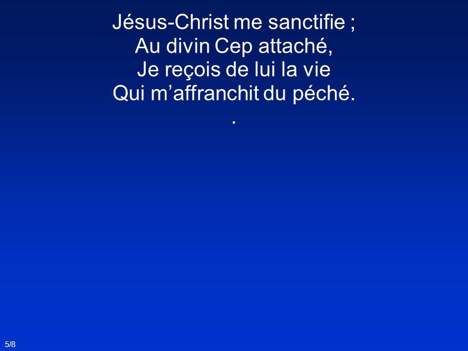 Jésus-Christ me sanctifie ; Au divin Cep attaché, Je reçois de lui la vie Qui maffranchit du péché.. 5/8