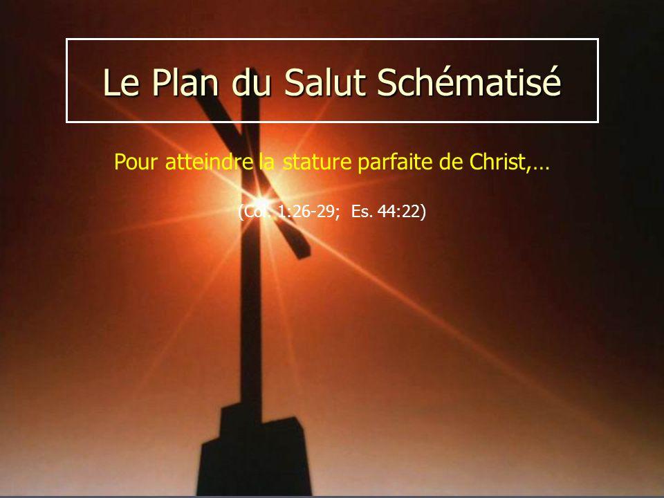 Pour atteindre la stature parfaite de Christ,… (Col. 1:26-29; Es. 44:22)