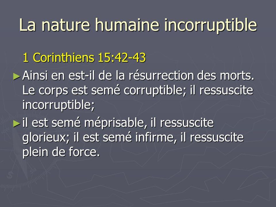 La nature humaine incorruptible 1 Corinthiens 15:42-43 Ainsi en est-il de la résurrection des morts. Le corps est semé corruptible; il ressuscite inco