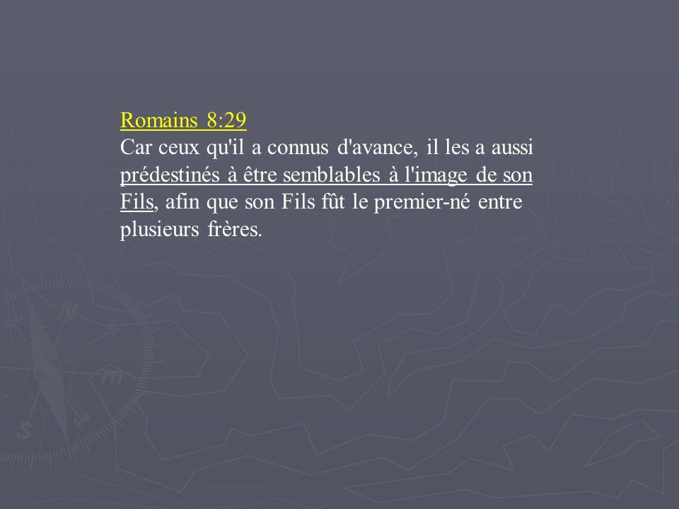 Romains 8:29 Car ceux qu'il a connus d'avance, il les a aussi prédestinés à être semblables à l'image de son Fils, afin que son Fils fût le premier-né