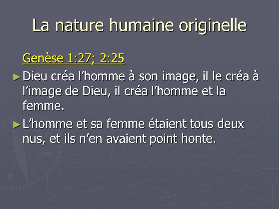 La nature humaine originelle Genèse 1:27; 2:25 Dieu créa lhomme à son image, il le créa à limage de Dieu, il créa lhomme et la femme. Dieu créa lhomme