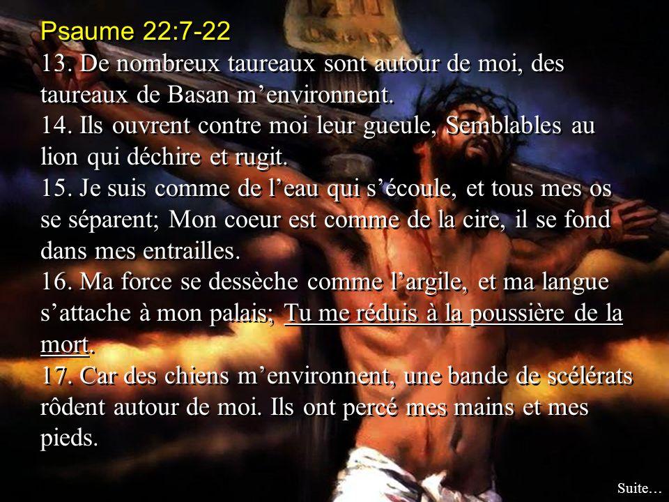 Psaume 22:7-22 13. De nombreux taureaux sont autour de moi, des taureaux de Basan menvironnent. 14. Ils ouvrent contre moi leur gueule, Semblables au