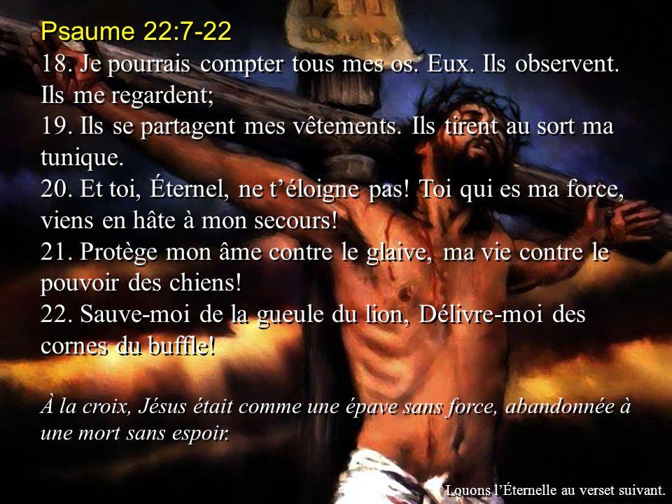 Psaume 22:7-22 18.Je pourrais compter tous mes os.