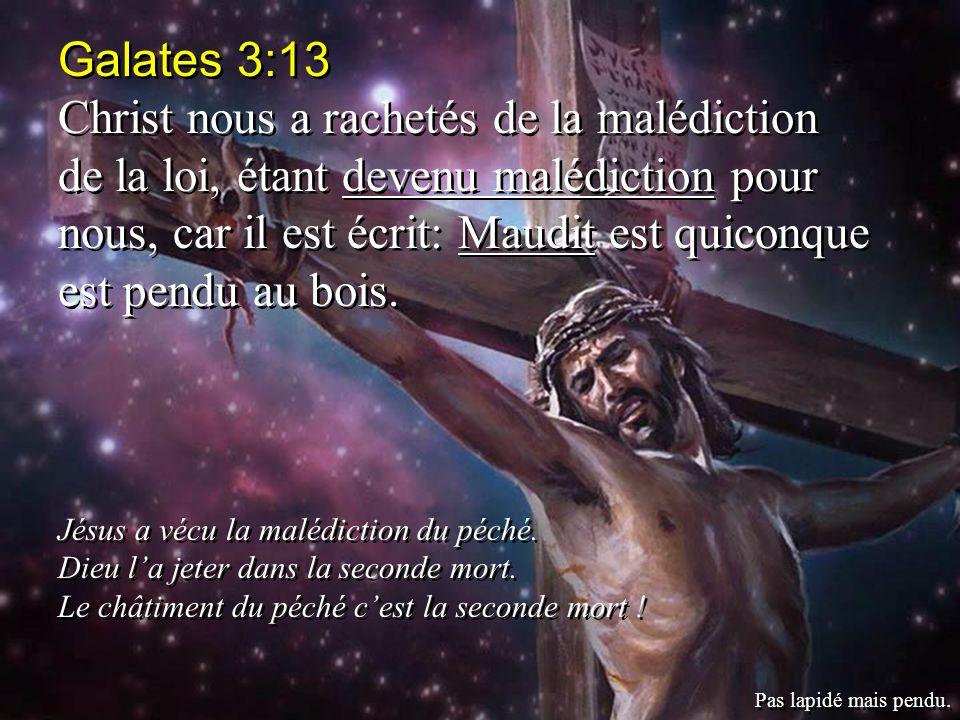 Galates 3:13 Christ nous a rachetés de la malédiction de la loi, étant devenu malédiction pour nous, car il est écrit: Maudit est quiconque est pendu au bois.