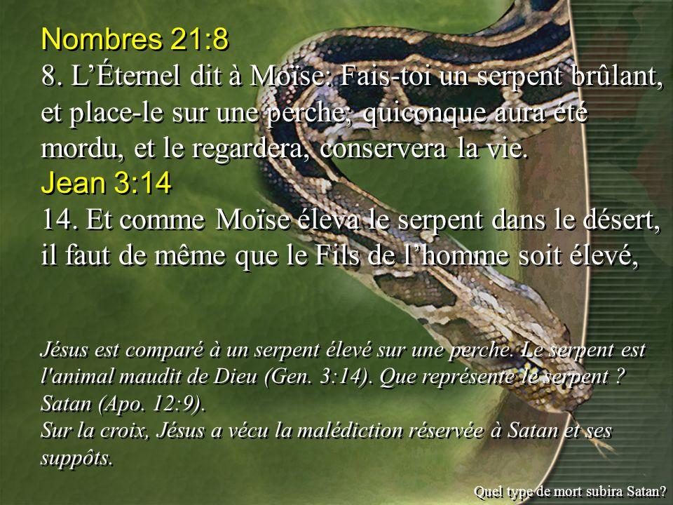 Nombres 21:8 8. LÉternel dit à Moïse: Fais-toi un serpent brûlant, et place-le sur une perche; quiconque aura été mordu, et le regardera, conservera l