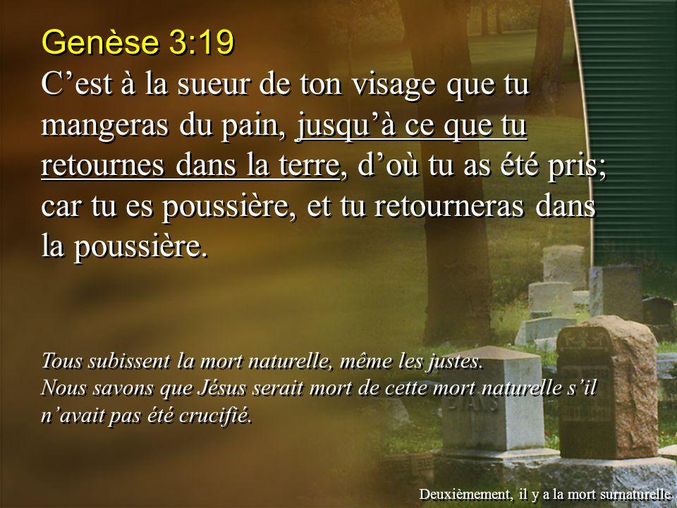 Genèse 3:19 Cest à la sueur de ton visage que tu mangeras du pain, jusquà ce que tu retournes dans la terre, doù tu as été pris; car tu es poussière, et tu retourneras dans la poussière.