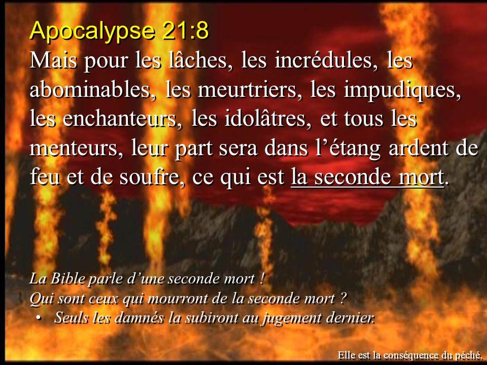 Apocalypse 21:8 Mais pour les lâches, les incrédules, les abominables, les meurtriers, les impudiques, les enchanteurs, les idolâtres, et tous les menteurs, leur part sera dans létang ardent de feu et de soufre, ce qui est la seconde mort.