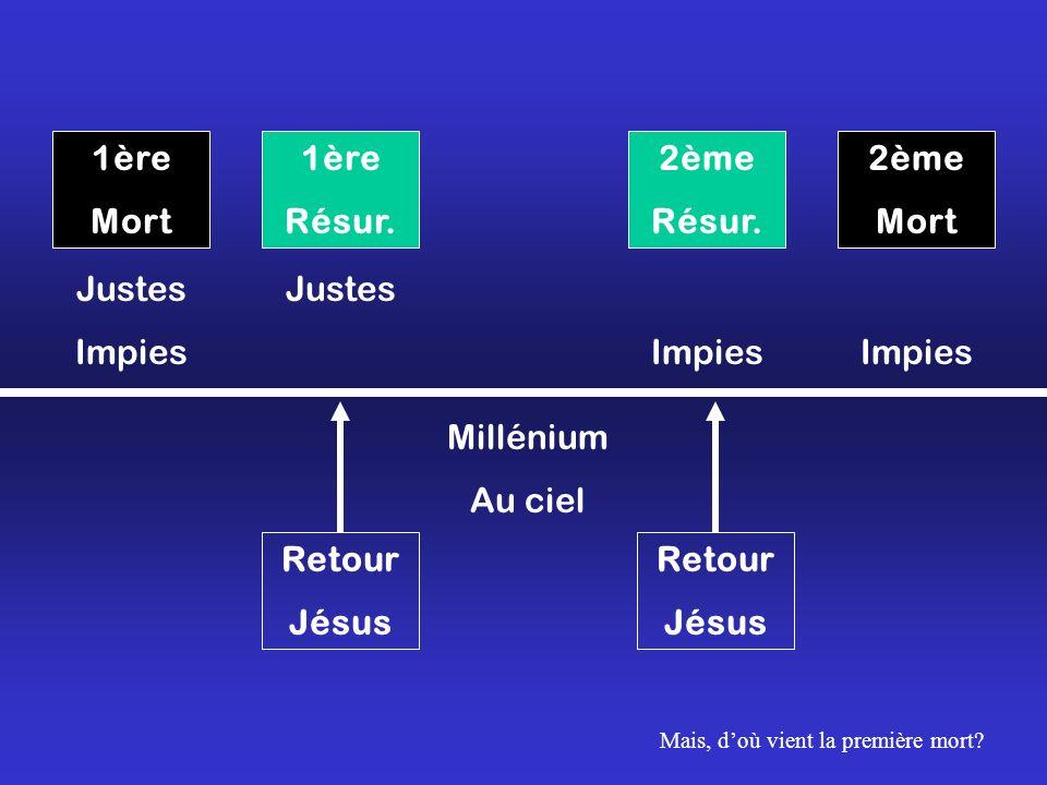 1ère Mort 2ème Mort 1ère Résur. 2ème Résur. Justes Impies Justes Impies Millénium Au ciel Retour Jésus Retour Jésus Mais, doù vient la première mort?