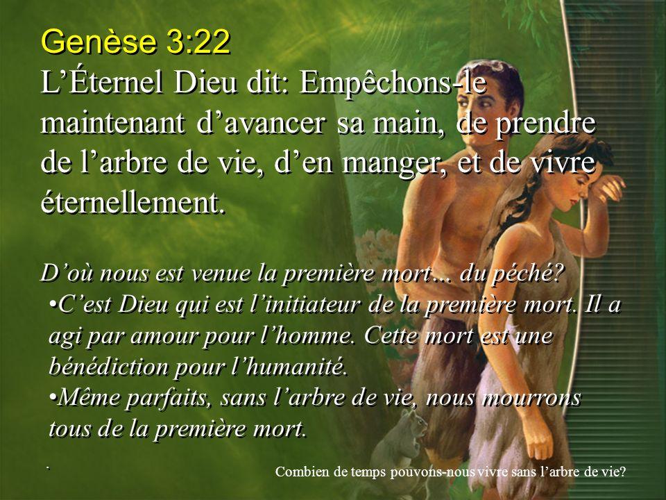 Genèse 3:22 LÉternel Dieu dit: Empêchons-le maintenant davancer sa main, de prendre de larbre de vie, den manger, et de vivre éternellement. Doù nous
