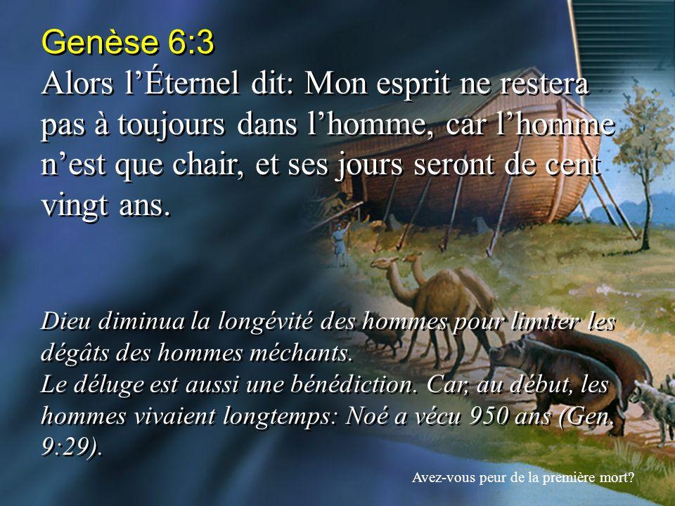 Genèse 6:3 Alors lÉternel dit: Mon esprit ne restera pas à toujours dans lhomme, car lhomme nest que chair, et ses jours seront de cent vingt ans. Die