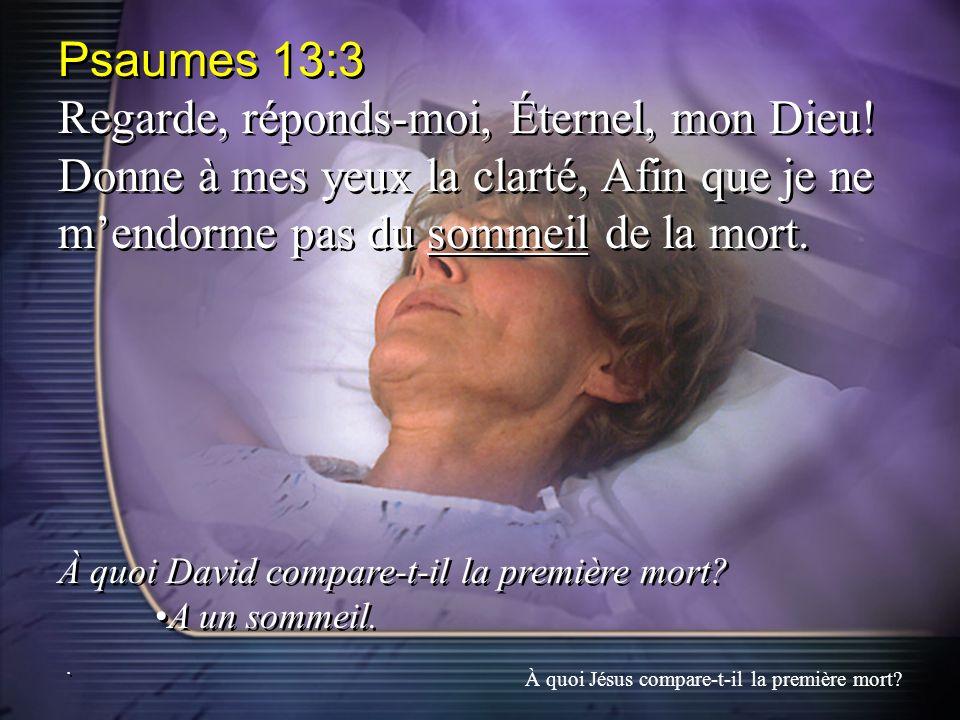 Psaumes 13:3 Regarde, réponds-moi, Éternel, mon Dieu! Donne à mes yeux la clarté, Afin que je ne mendorme pas du sommeil de la mort. À quoi David comp