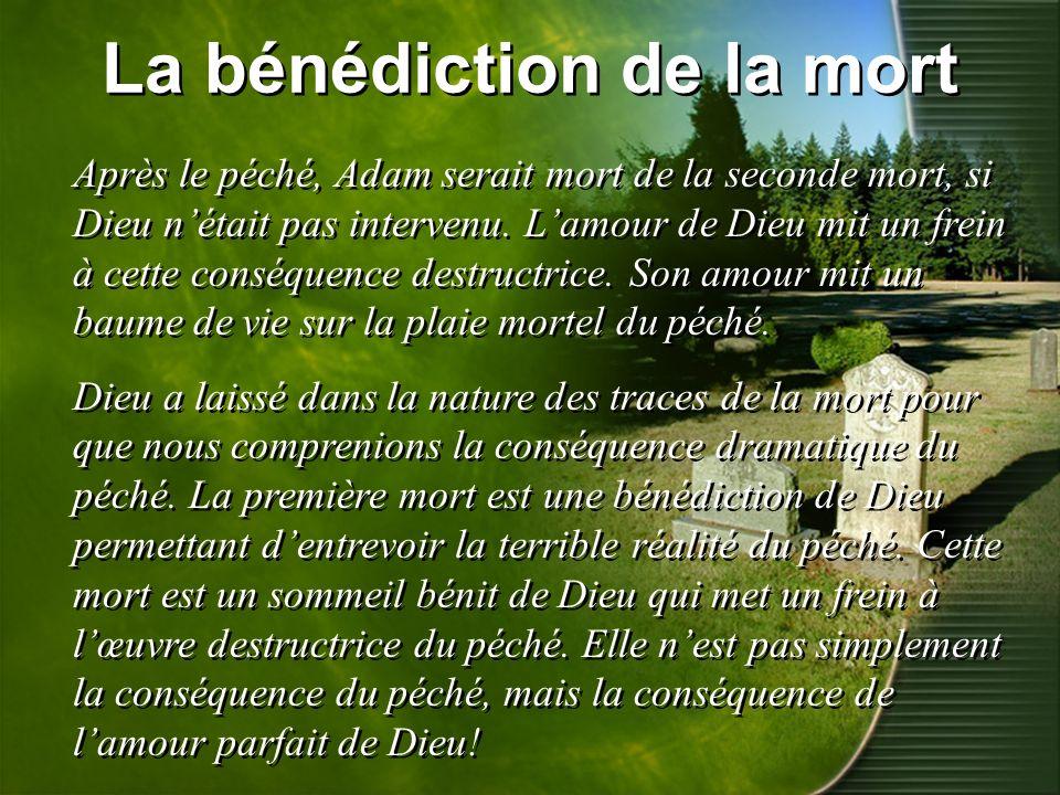 La bénédiction de la mort Après le péché, Adam serait mort de la seconde mort, si Dieu nétait pas intervenu. Lamour de Dieu mit un frein à cette consé