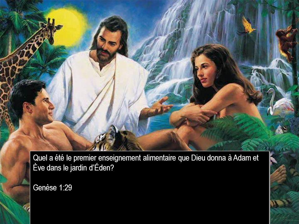 Quel a été le premier enseignement alimentaire que Dieu donna à Adam et Ève dans le jardin dÉden? Genèse 1:29 Quel a été le premier enseignement alime