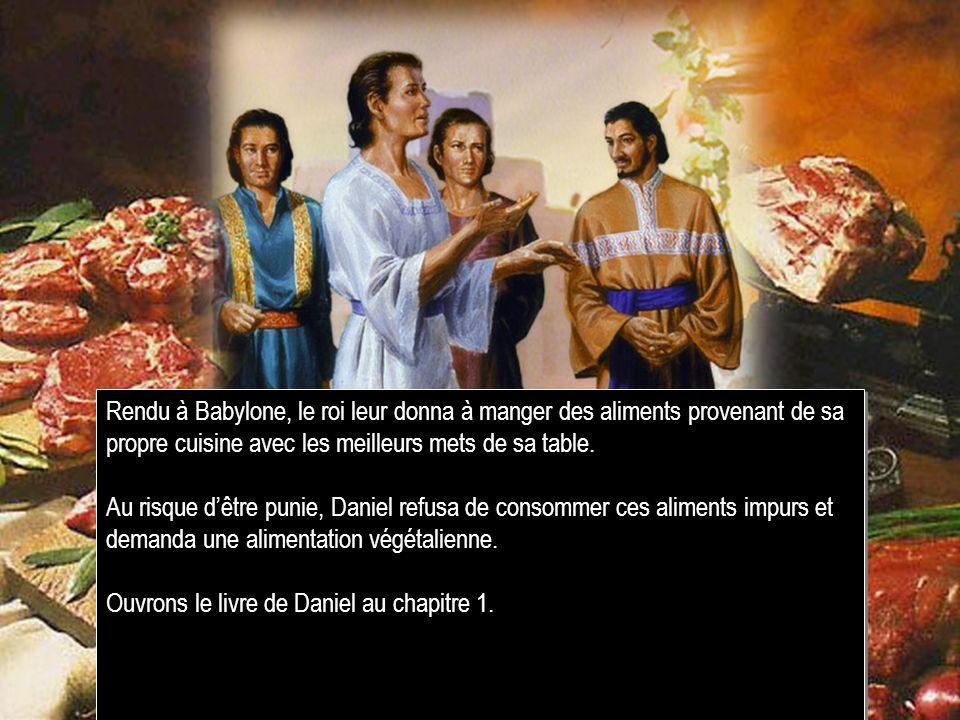 Rendu à Babylone, le roi leur donna à manger des aliments provenant de sa propre cuisine avec les meilleurs mets de sa table. Au risque dêtre punie, D