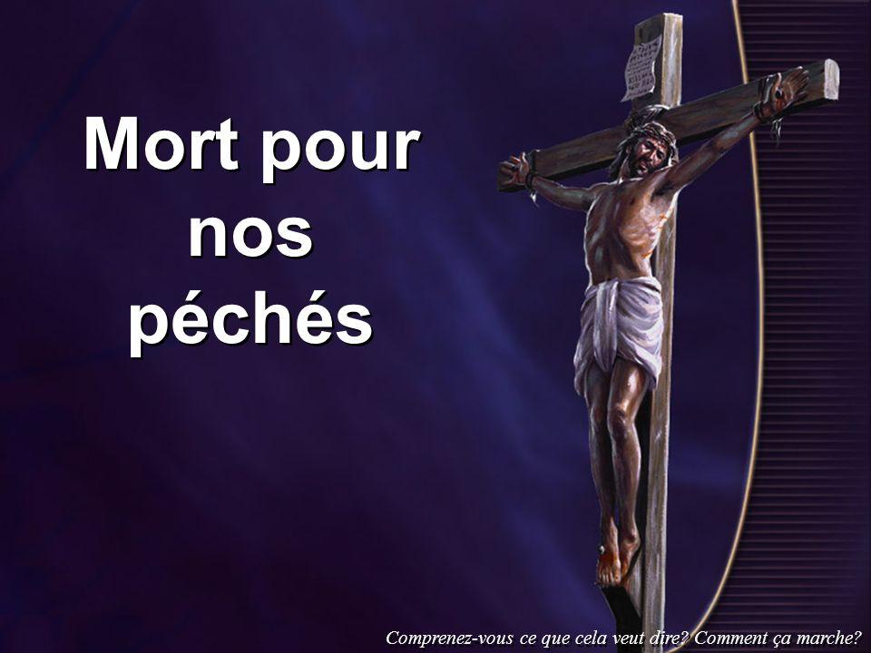 Mort pour nos péchés Comprenez-vous ce que cela veut dire? Comment ça marche?