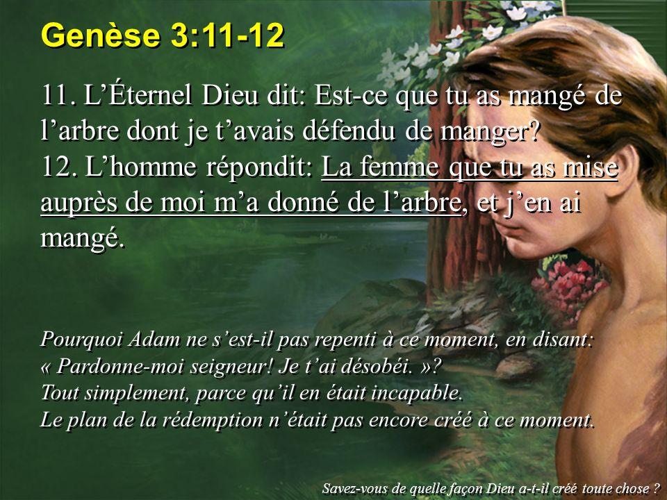 Genèse 3:11-12 11. LÉternel Dieu dit: Est-ce que tu as mangé de larbre dont je tavais défendu de manger? 12. Lhomme répondit: La femme que tu as mise