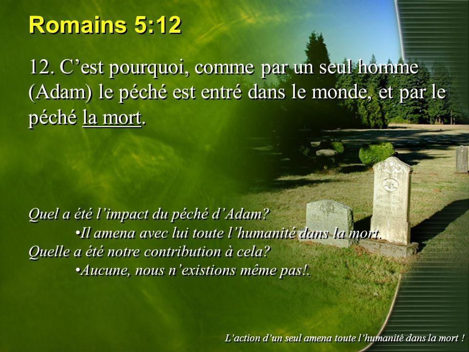 Romains 5:12 12. Cest pourquoi, comme par un seul homme (Adam) le péché est entré dans le monde, et par le péché la mort. Quel a été limpact du péché