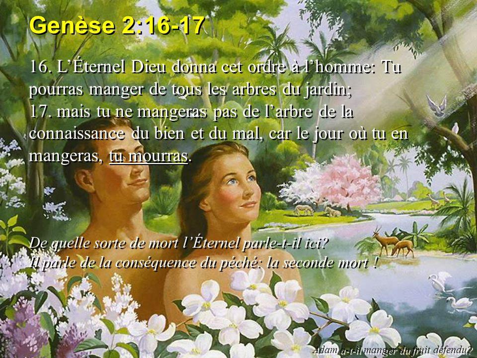 Genèse 2:16-17 16. LÉternel Dieu donna cet ordre à lhomme: Tu pourras manger de tous les arbres du jardin; 17. mais tu ne mangeras pas de larbre de la