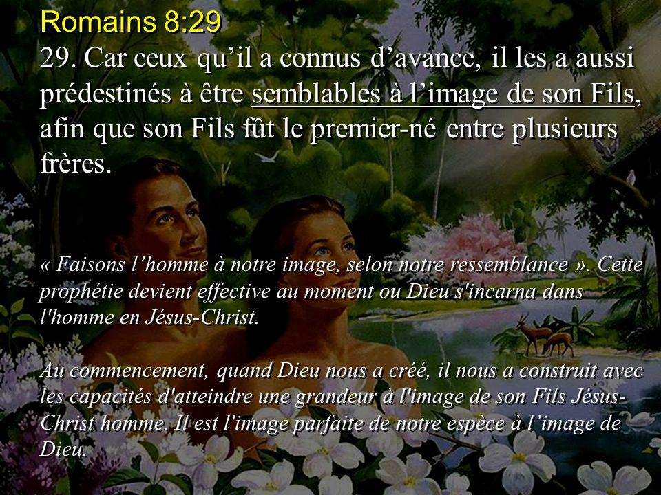 Romains 8:29 29.