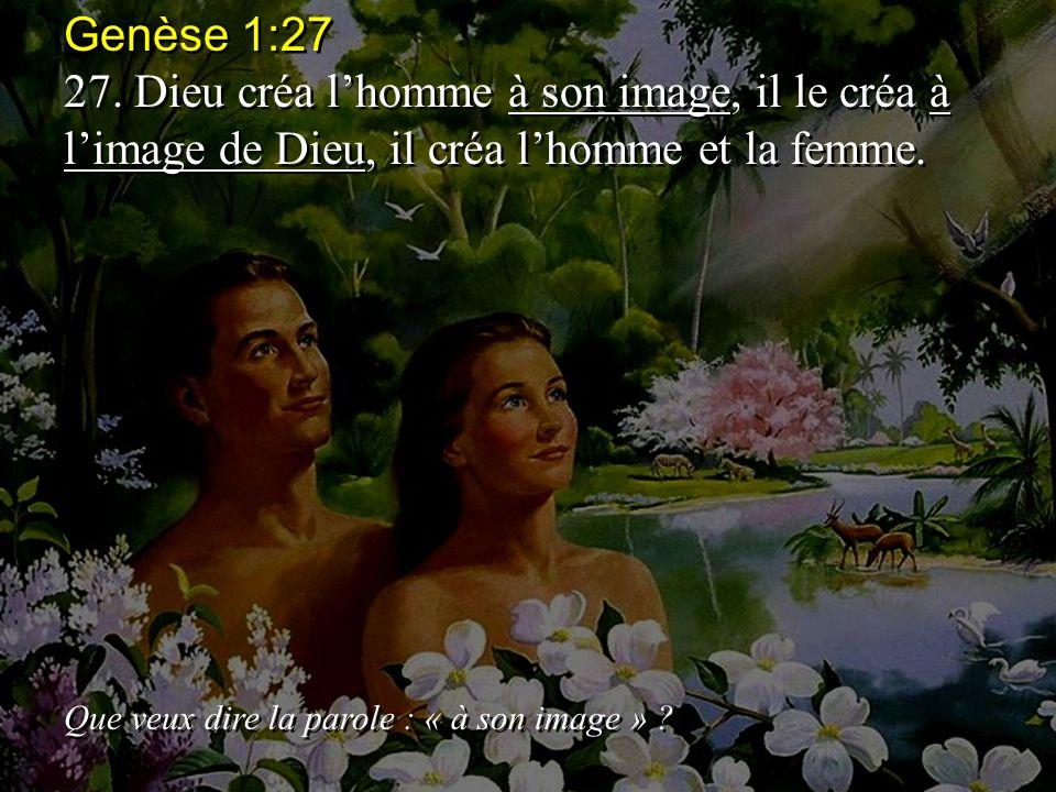 Genèse 1:27 27.