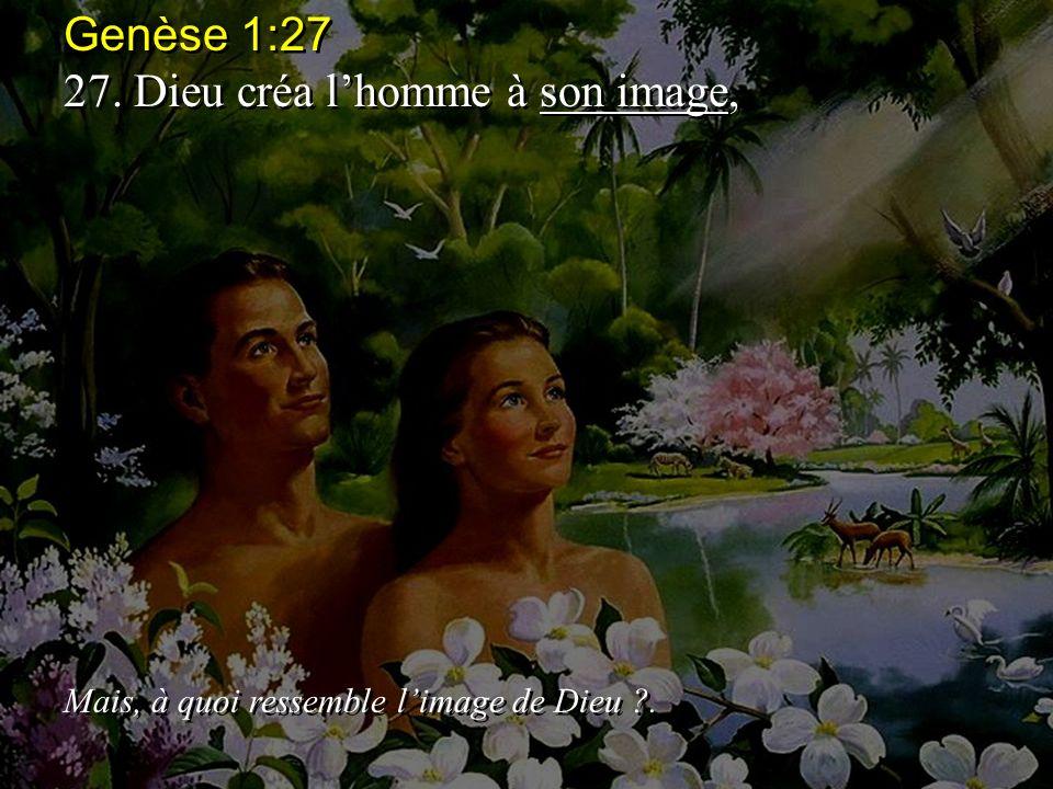 Genèse 1:27 27.Dieu créa lhomme à son image, Mais, à quoi ressemble limage de Dieu ?.