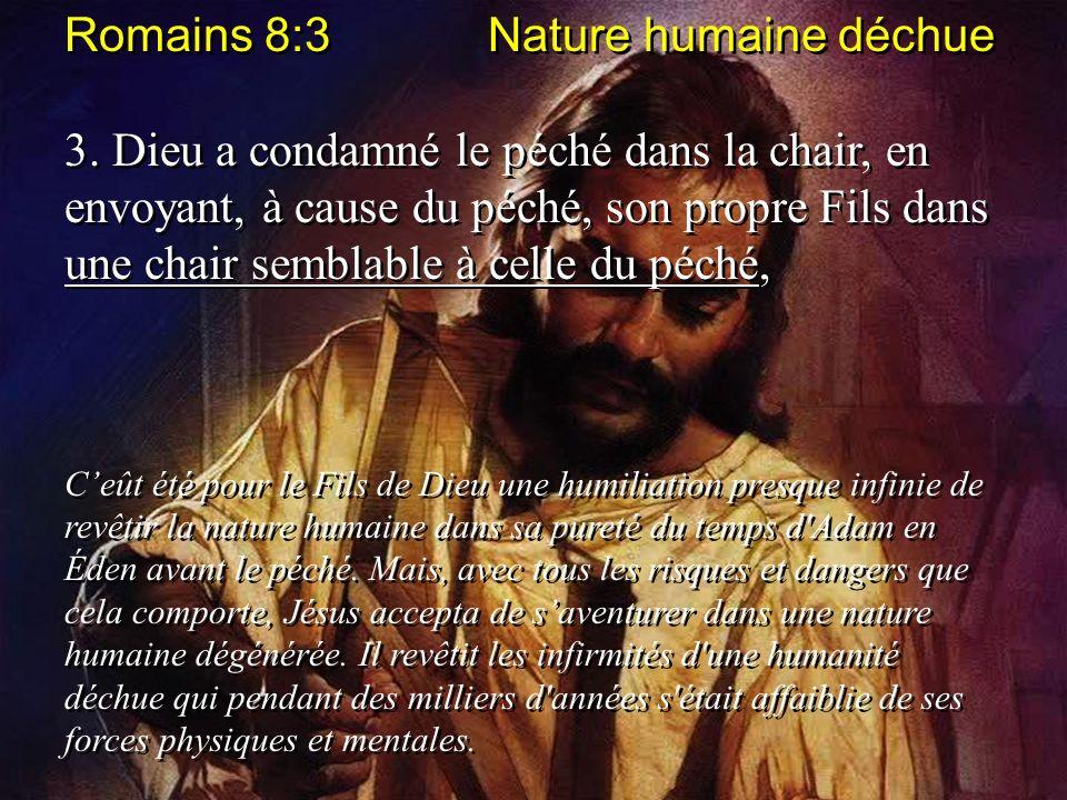 Romains 8:3 Nature humaine déchue 3. Dieu a condamné le péché dans la chair, en envoyant, à cause du péché, son propre Fils dans une chair semblable à