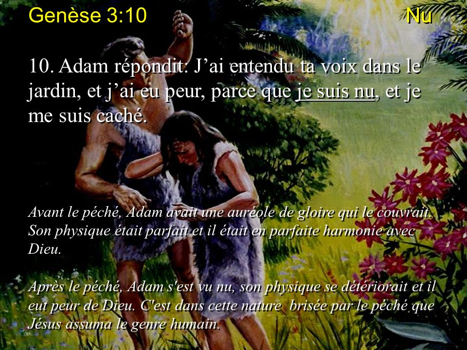 Genèse 3:10 Nu 10. Adam répondit: Jai entendu ta voix dans le jardin, et jai eu peur, parce que je suis nu, et je me suis caché. Avant le péché, Adam