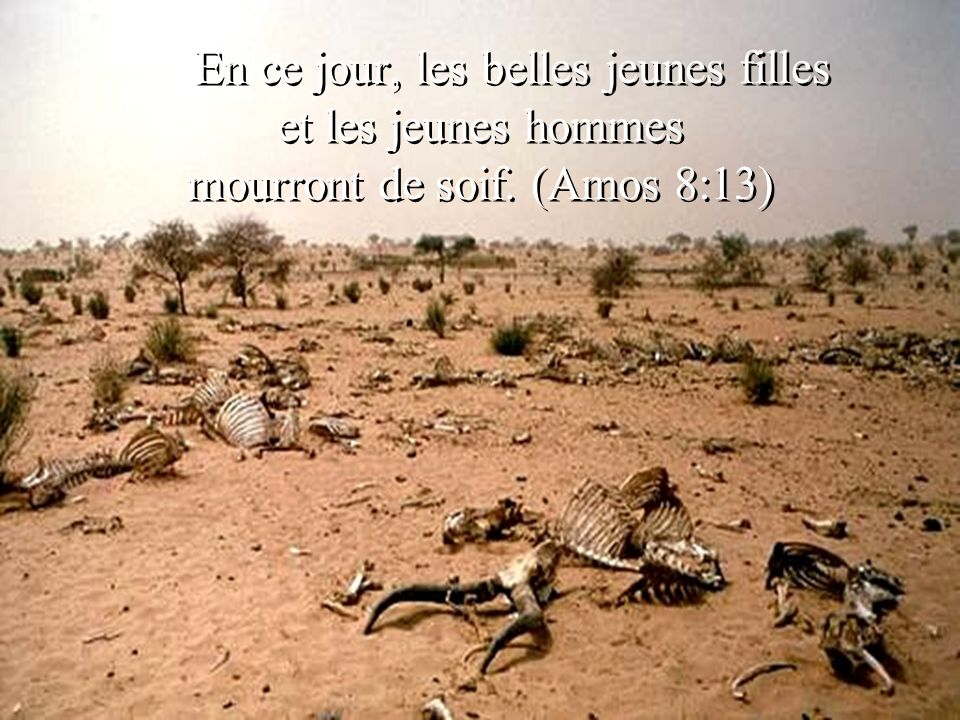 En ce jour, les belles jeunes filles et les jeunes hommes mourront de soif. (Amos 8:13) En ce jour, les belles jeunes filles et les jeunes hommes mour